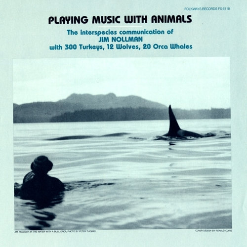 music with animals