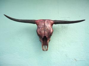 jason borders skull