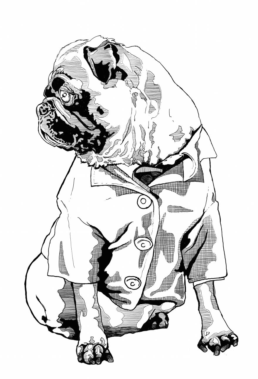 smart-dog-woof