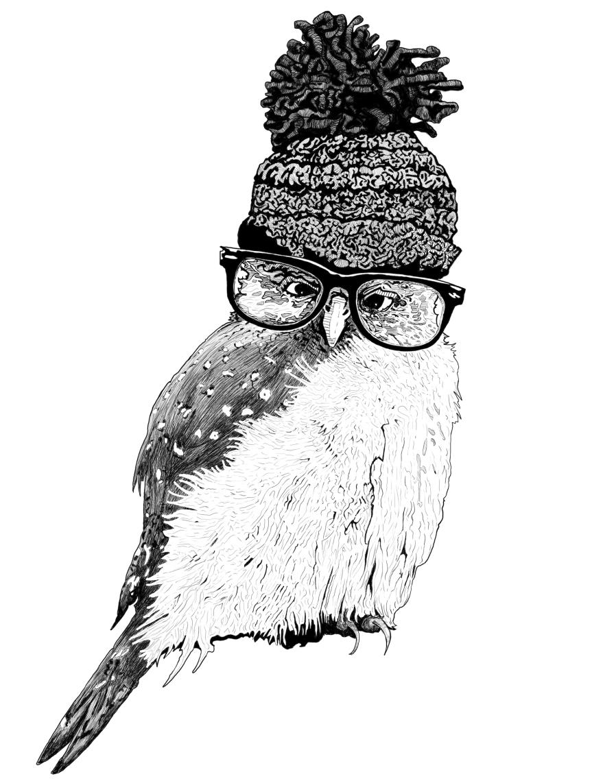 toory-hat-owl-in-glasses